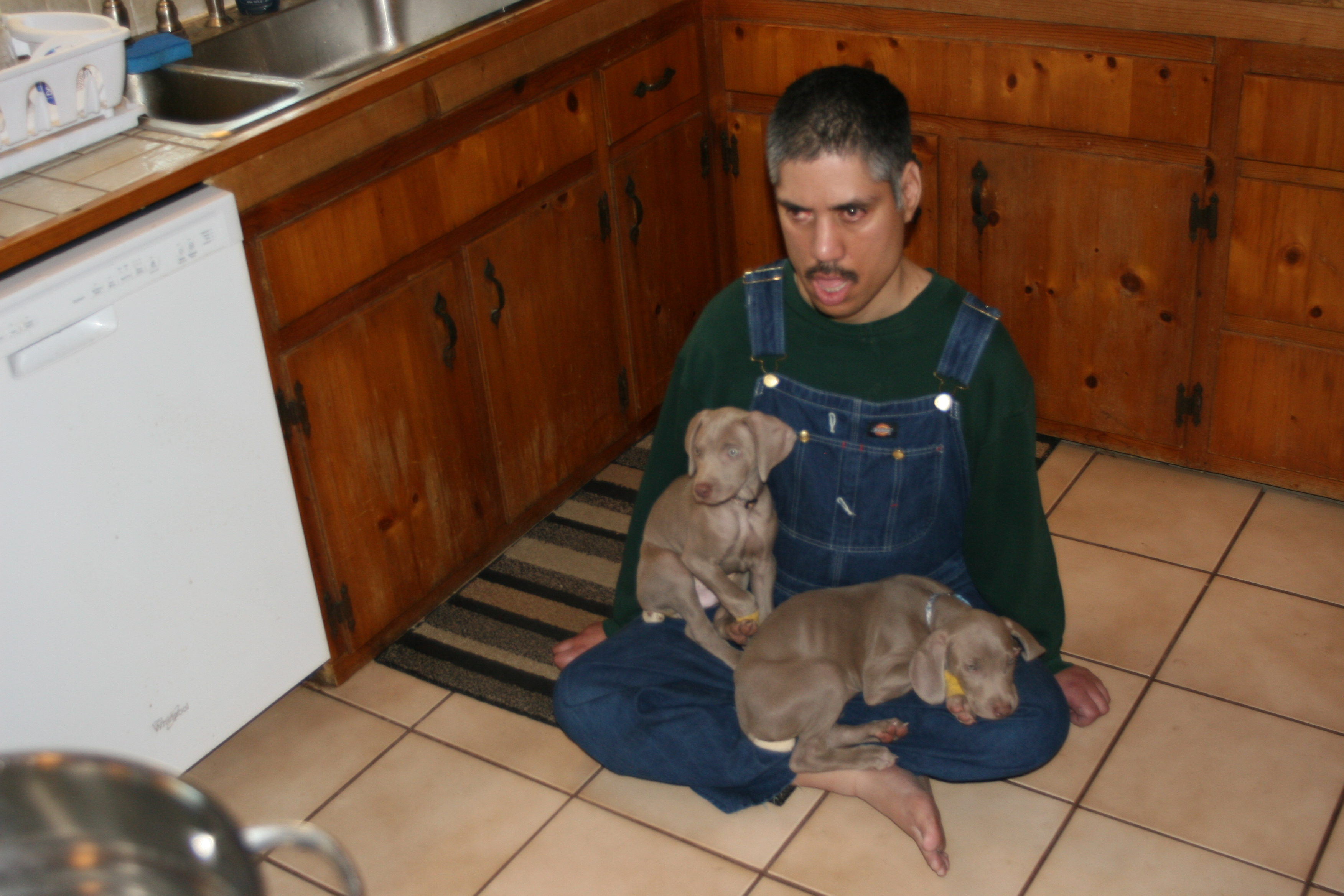 "This was the first time, Patrick met the puppies. They stayed with Pat for over 45 minutes.  Pat ""Look what Mom got Me!"""