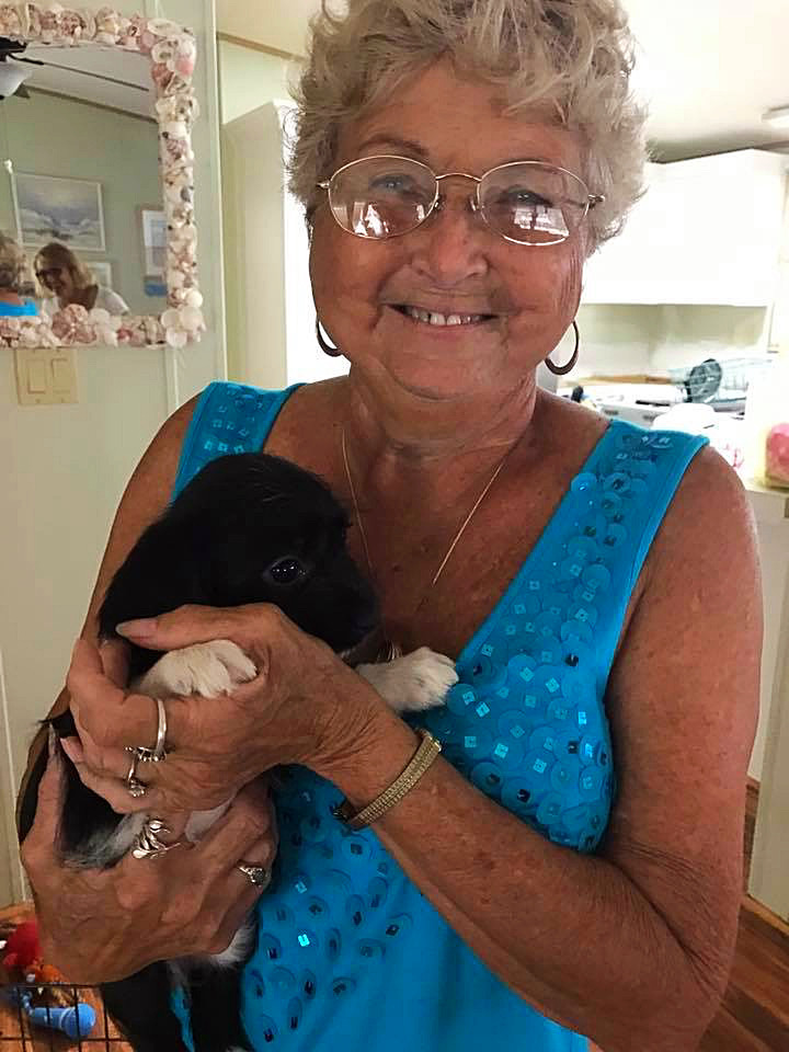 Mom was surprised with a new puppy for valentines day
