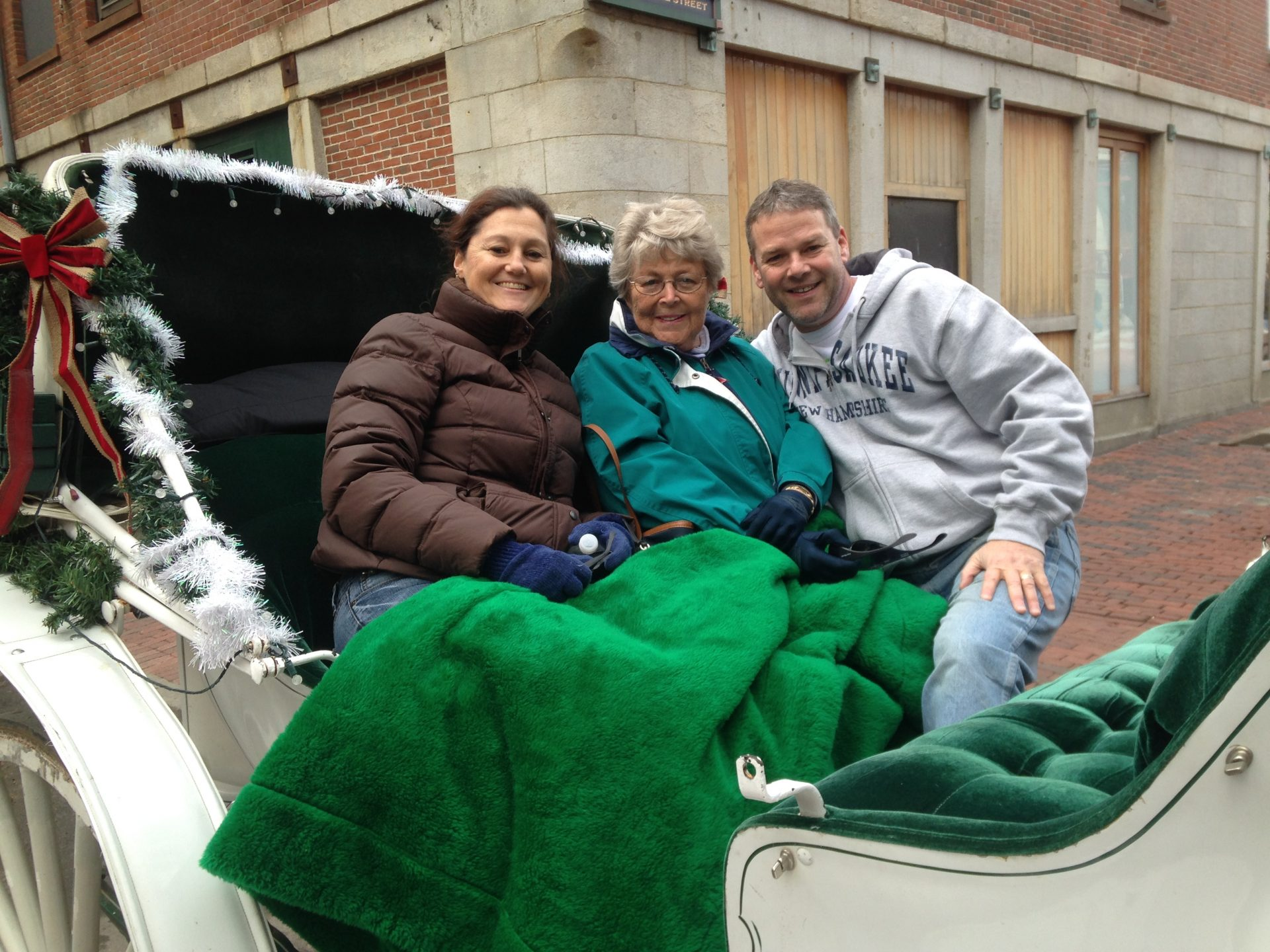 Horse drawn carriage ride -  Quincy Market - February 2016