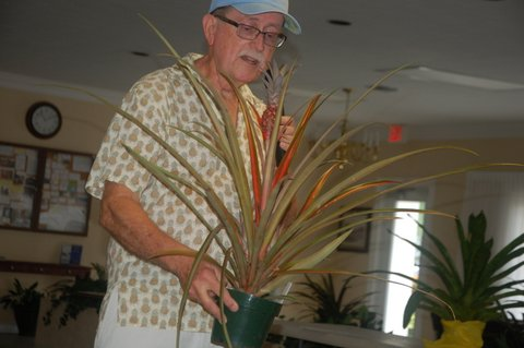 Jay presenting an ananas pineapple plant during show and tell at the FECBS club meeting