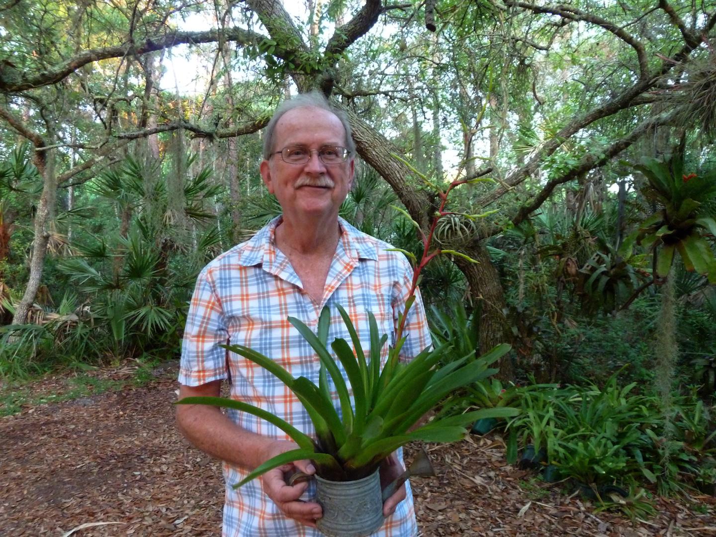 Port Orange bromeliads
