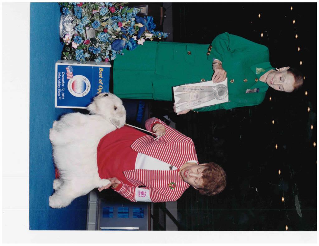December 12,2001