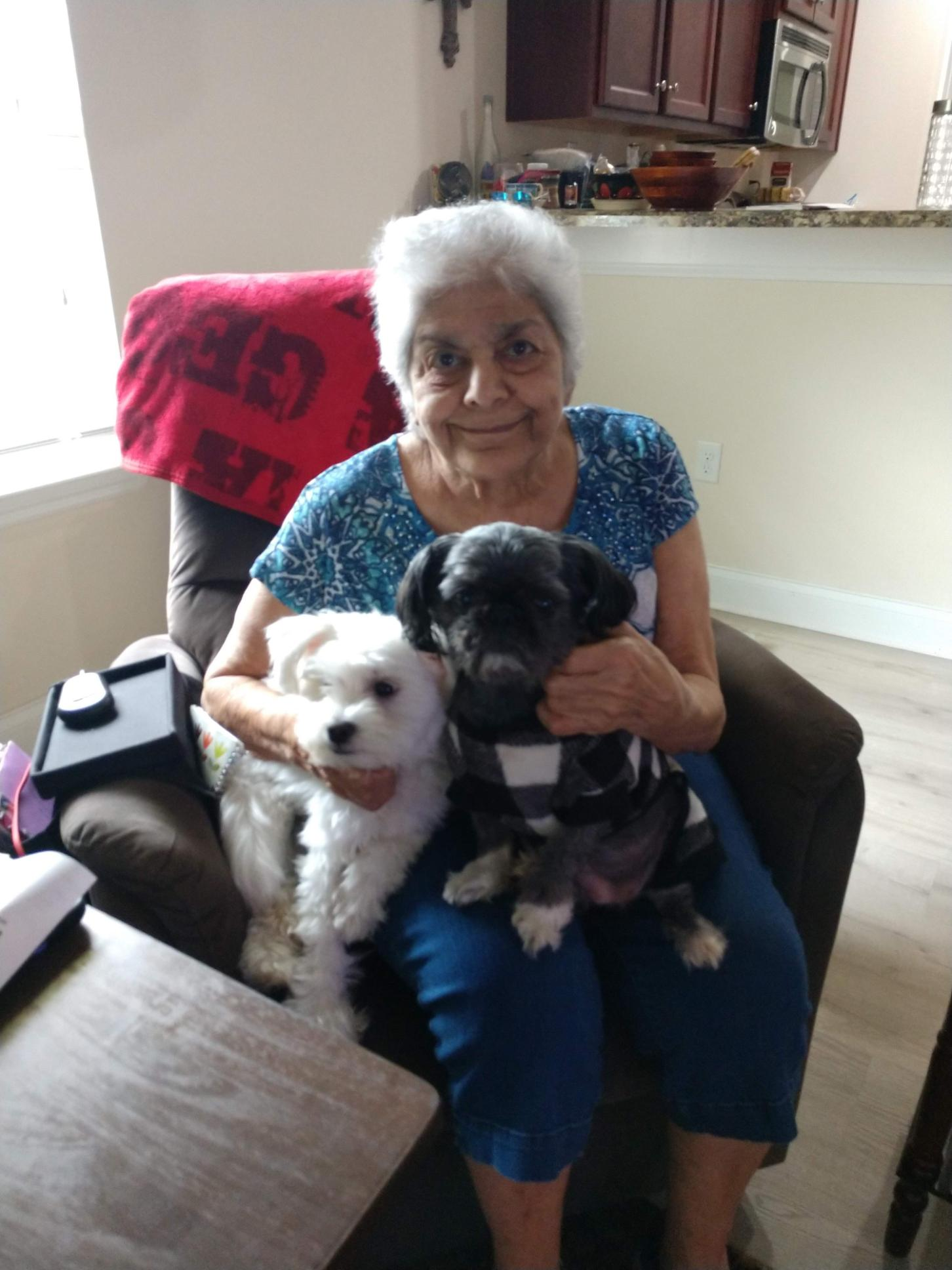 Pat with her grand pups Bucky and Lulu