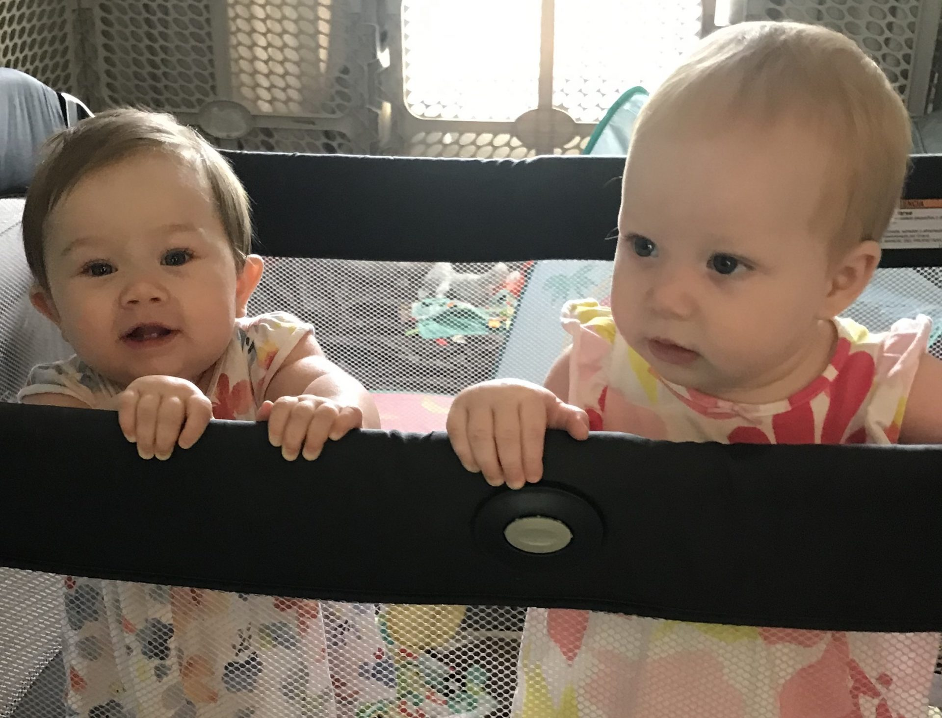 Joyce's latest great granddaughters Veda and Robin.